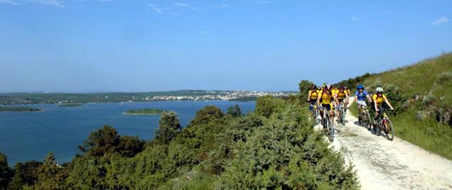 Vinice a olivové háje na Istrii. Poznejte Chorvatsko na kole.